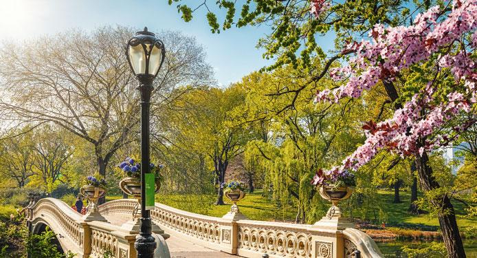 Verlobung im Central Park New York